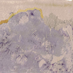 elissa-callen-hibiscus-eucalyptus-onion-avocado-fe-graphite-on-paper