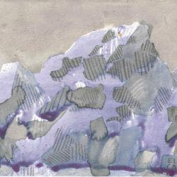 elissa-callen-hibiscus-fennel-sweet-gum-maple-graphite-on-paper